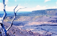 A volcanic crater with cracking floor, basalt cliffs and a dead tree in moon-like volcanic terrain.