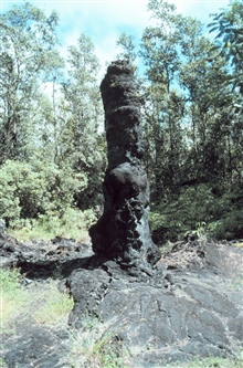 A lava tree formed by lava cooling around the tree trunk - some like this one