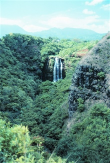 A waterfall on Kauai