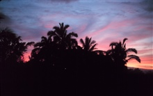 A Hilo sunset