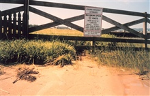 Erosion - ironically below a sign stating boat speed limit to minimize wake anderosion.