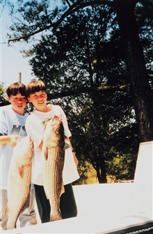Old rockfish ( striped bass) caught by young fishermen.