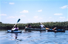 National Oceanographic Data Center employees at sea -  kayaking along thePatuxent River.