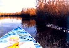 Paddling in a Patuxent marsh.