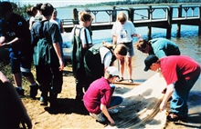 A middle school field trip to Kings Landing.  Inspecting content and sorting thecatch of a seine net after dragging.