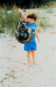 Young naturalist inspecting a horseshoe crab shell.  The carapace was empty.If this was a live animal, picking up by tail could cause injury to the crab.