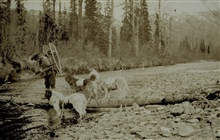 Using pack dogs after leaving the railroad near Cantwell.Spring reconnaissance between upper Cook Inlet and Fairbanks.Triangulation party of William M. Scaife