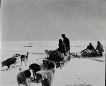 Dog sled on Arctic Field Party.Combined operations party in Arctic Alaska.DEW Line surveys in Alaska Arctic