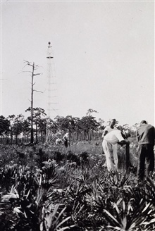 Bonita tower in southwest Florida.Traverse party measuring distance in foreground.Party off of HYDROGRAPHER