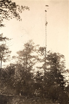 Jasper S. Bilby observing from reconnaissance pole attached to tree.Top of pole is 104 feet above ground.Checking for intervisibility between stations.Helping plan for necessary height of tower at station