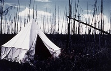 Camp on the Porcupine River