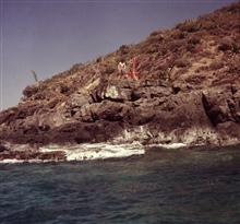 Station Hans at south end of Hans Lollik Island.Building party off of WHITING.Note century plants and desert aspect of island