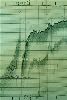 Near vertical dropoff at edge of reef on Eleuthera Island.Record from Ship PEIRCE off Eleuthera Island, Bahamas, 1984