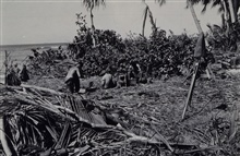 Jeremiah Morton's survey crew on Saipan.Newspaper article termed Morton and his crew sniper bait