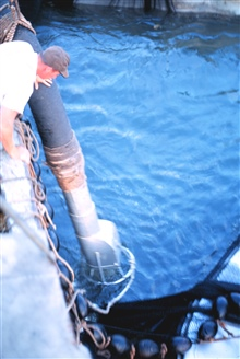 Preparing to pump the trapped fish aboard the menhaden fishing mother vessel