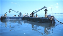 Menhaden fishing - beginning to set out the nets in purse seining operation