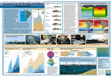 An educational poster produced by the United Nations Food and AgricultureOrganization (FAO) for the Southeast Pacific Ocean area.