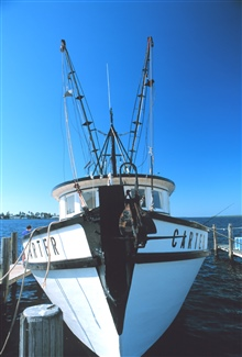 Bow of a shrimp trawler at Matlasha Pass