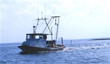 A small shrimp boat in the Intracoastal Waterway