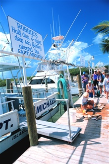 Unloading and distributing a catch of yellowtail snapper