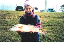 A smiling eight-year old displays the red drum that she caught at the FloridaPower Plant discharge.