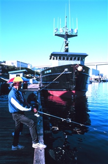 Fisherman taking a fisherman's holiday in St. Paul Harbor.  Umbrella hat freeshands for more important fishing tasks.  Umbrella hat necessary to protect fromfrequent showers, not ward off the midnight sun.  Apparently this fisherman didnot consult th