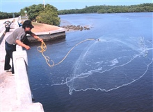 Photo #2a - A fisherman casting his net for mullet and other fish off a bridgesouth of Everglades City.