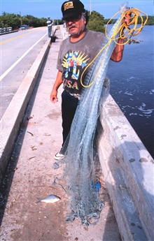 Photo #6a - A fisherman displaying his catch after his net for mullet and otherfish off a bridge south of Everglades City.