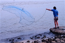 Fisherman casting his net for mullet and other fish next to the Judge JollyBridge on Marco Island.