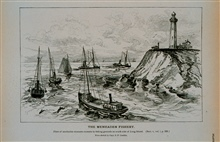 Fleet of menhaden steamers en route to fishing groundsOn south side of Long Island, N. YFrom sketch by Capt. B. F. Conklin