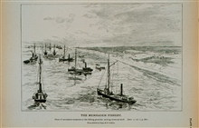 Fleet of menhaden steamers on the fishing grounds; seining crews at workFrom sketch by Capt. B. F. Conklin