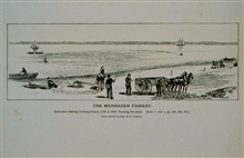 Haul-seine fishing for menhaden at Long Island, 1790 to 1850Hauling the seine on the beach by horse-powerFrom sketch by Capt. B. F. Conklin