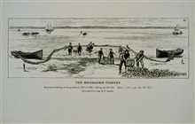 Haul-seine fishing for menhaden at Long Island, 1790 to 1850Taking out the fishFrom sketch by Capt. B. F. Conklin