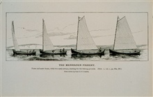 Menhaden purse and mate boats and two carry-away boatsStarting for the fishing groundsFrom sketch by Capt. B. F. Conklin