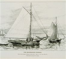 Carry-away sloops; bailing in the catch.From a sketch by Capt. B.F. Conklin.