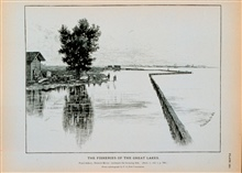 Pond fishery, Detroit River; inclosure for keeping fish alivePhotograph by U. S. Fish Commission