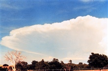 Anvil of large cumulonimbus thunderhead during early stages of developing storm.