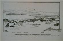 Natives selecting a driveView over hauling grounds of holluschickie or bachelor seals at English BayLooking from Tolstoi dunesDrawing by H. W. Elliott