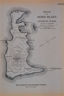 Sketch map of Herd's Island, Antarctic OceanLatitude: 53 degrees 10 minutes South.  Longitude: 73 degrees 30 minutes East