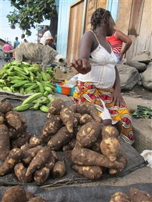 Sao Tomean Women Selling Roots at Local Market