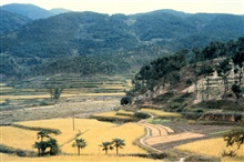 View of Chinese countryside with terraced hills