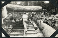 A huge log being placed on a railroad car at Batottan, British North Borneo.