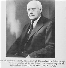 Edwin Linton, Professor at Pennsylvania University.  Was associated with theFisheries Laboratory as an independent investigator from 1882 to 1941.  P. 58.The Story of the BCF Biological Laboratory Woods Hole, Massachusetts, by P. S.