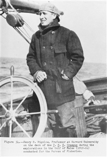 Henry B. Bigelow, Professor at Harvard University on the deck of the U.S.S.GRAMPUS during the explorations in the Gulf of Maine (1912-14) conducted forthe Bureau of Fisheries.  P. 81.The Story of the BCF Biological Laboratory Woods Hole, Massachusett