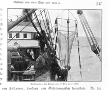 Recovering the trawl net on December 17, 1898.  Even the cook comes out to watch!In: Aus den Tiefen des Weltmeeres by Carl Chun, 1903. Call No. Q115.V15 1903.