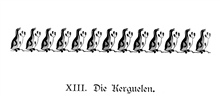 Artwork at the beginning of Chapter XIII, Kerguelen Island.In: Aus den Tiefen des Weltmeeres by Carl Chun, 1903. Call No. Q115.V15 1903.