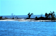 Area 1, a south southwest view from Mobile Canal looking across the narrowestbeach section with the Gulf of Mexico in the background.