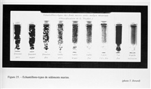 Figure 25.  Samples of different types of marine sediments.  This display wasconceived by Professor Julien Thoulet in 1905 to both educate the public butalso as guide for sailors who used bottom samples as a guide in piloting.