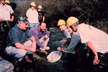 Jim Bybee and Rick Wantuck of NOAA examine small steelhead trout in the creek.