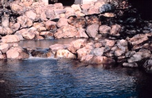 The completed fish pools, this image clearly shows how easily fish can nownavigate the creek.
